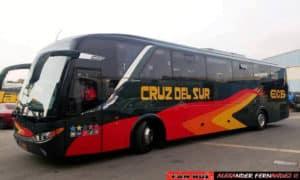 cruz bus