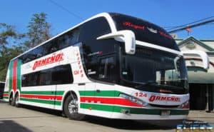 ormeño bus