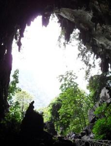 travel-vaccinations-peru-rabies-caves