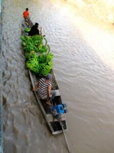 amazon river boat trip