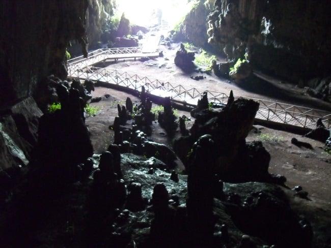 Stalagmites in oilbird cave