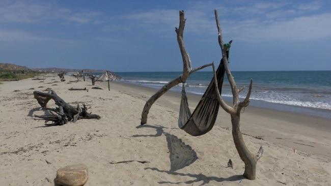 Beach at Grillo 3 Puntas Eco Hostel