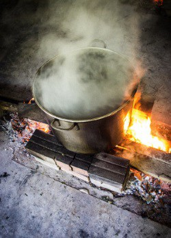 Brewing ayahuasca