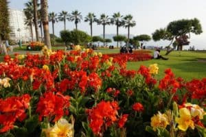 Parque de Amor - What to do on your layover in Lima