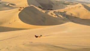 Sandboarding - Itinerary in Peru