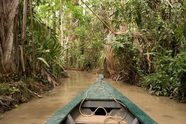 Canoe on River in Tambopata National Reserve in Peruvian Amazon