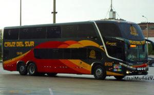 cruz del sur bus company